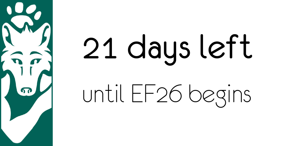 White Eurofurence Banner image displaying days until next EF